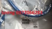 Dây nhảy patch cord 3m Commscope (CO155D2-0ZF010)
